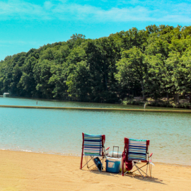 Your vacation destination — Lake of the Ozarks State Park has it all! Photograph by Vinh Phan.