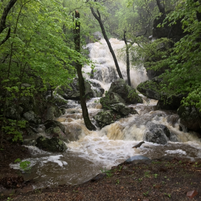 Flooded Falls. Photograph by Rebecca Brewer.