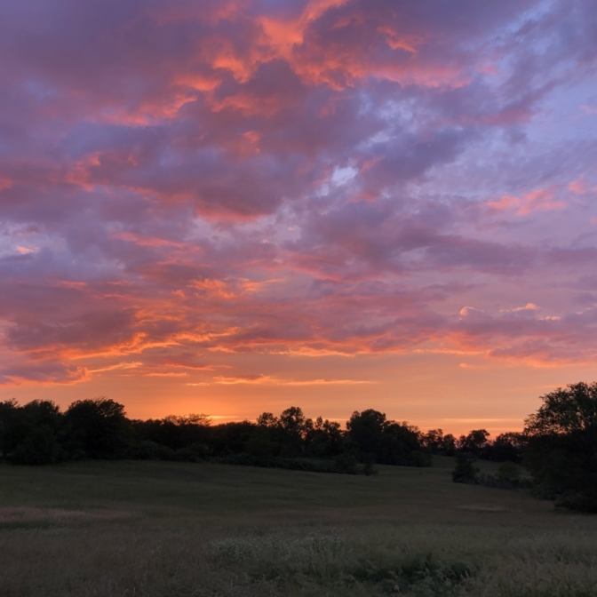Sunset Over the Field. Photograph by Charlotte Carpenter.
