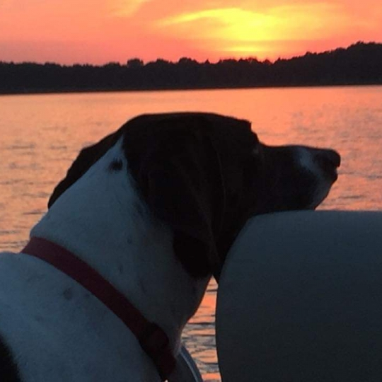 Sunset Cruise. Photograph by Rebecca Conway.
