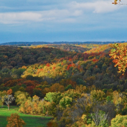 Fall Comes to the Ozark Hills. Photograph by Tom Corey. **Selected for the My Missouri 2021 exhibition**