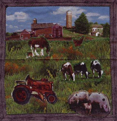 Rural DeKalb County - Quilted by Emily Irene Sifers.