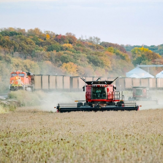 Holt County Harvest. Photograph by Garrett Derr. **Selected for the My Missouri 2021 exhibition**