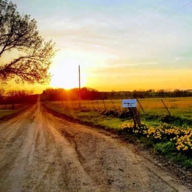 Country Roads. Photograph by Karen Dodson. **Selected for the My Missouri 2021 exhibition**
