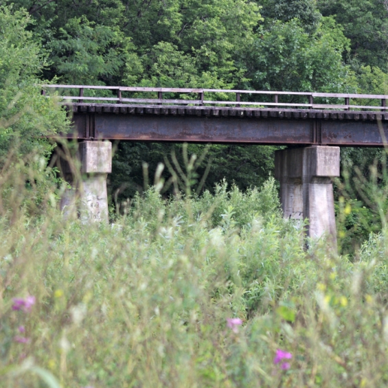 Abandoned Train Trestle. Photograph by Karen Gallaher.