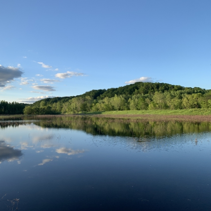 Eagle Bluffs Conservation Area. Photograph by Matthew Glover.