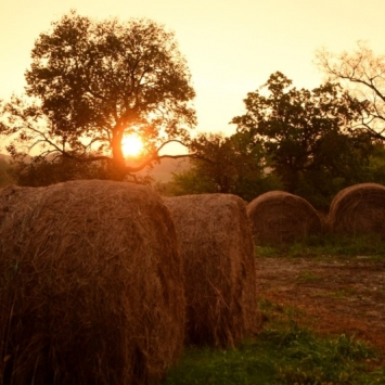Sunset with Hay Bales