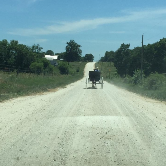 Amish Buggy. Photograph by Jeff Guay.