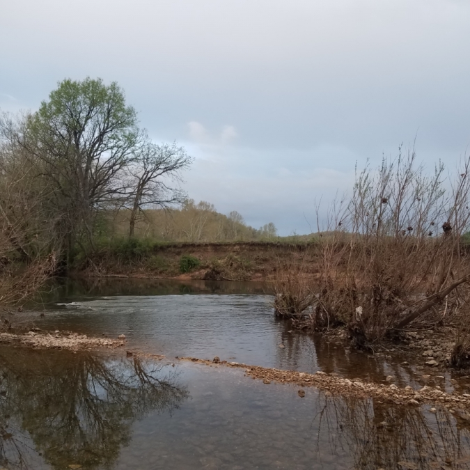 River. Photograph by Kaylee Guyer.