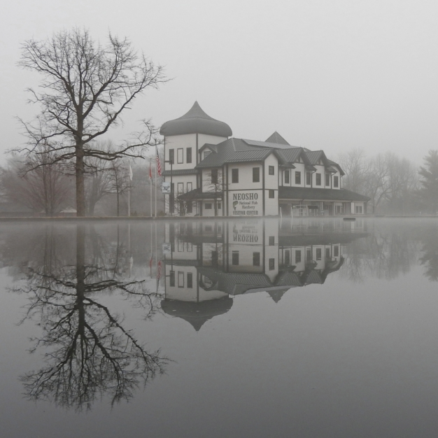 Hatchery in the Fog. Photograph by Bruce Hallman. **Selected for the My Missouri 2021 exhibition**