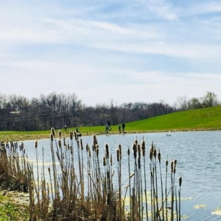 Spring at Spur Pond. Photograph by Robin Harden.