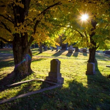 Sinking Creek Cemetery. Photograph by Carla Hayes.