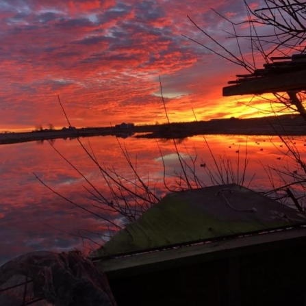 Sunrise Duck Hunting Lockwood, Missouri. Photograph by Norman Knowlton.