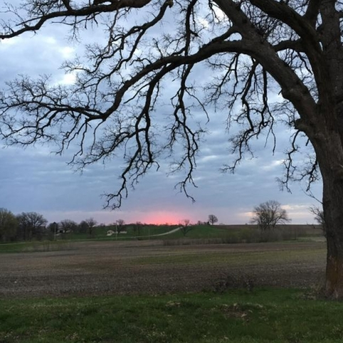 Sunrise in Highview. Photograph by Linda Maupin.