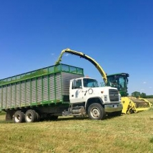 The Cutting Silage. Photograph by Sharon Murphy.
