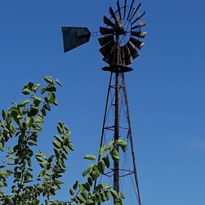 Knox County Windmill. Photograph by Betty Nappier.