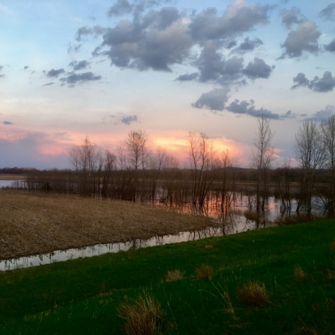 Fiery Firmament Over Flooded Fields. Photograph by Torrie Roodhouse.
