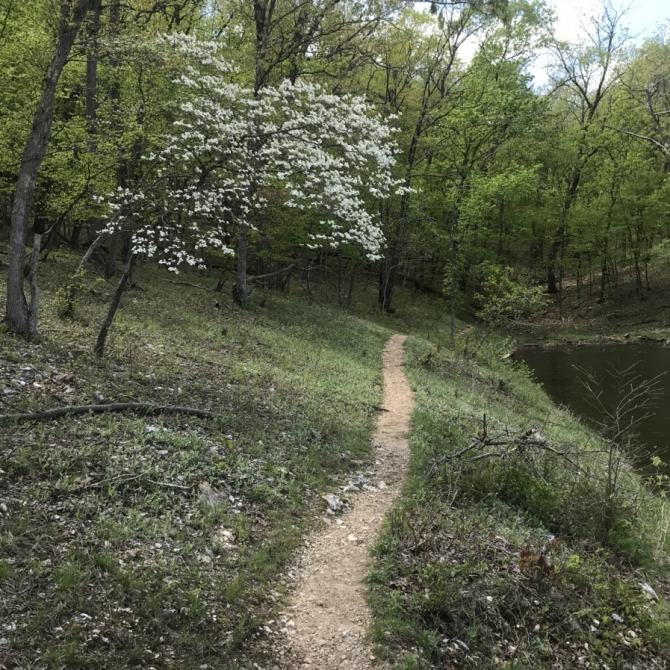 Cuivre River State Park. Photograph by Hannah Salrin.