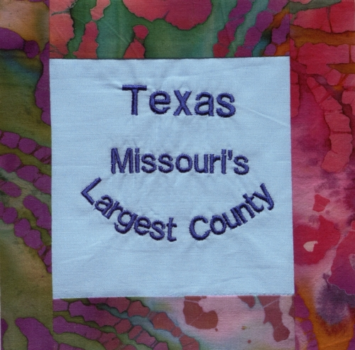 Texas County - Quilted by Linda Finley Loman.