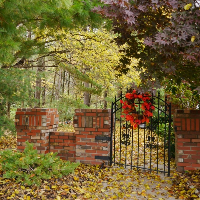 Welcoming Fall. Photograph by Debbie Santagato.