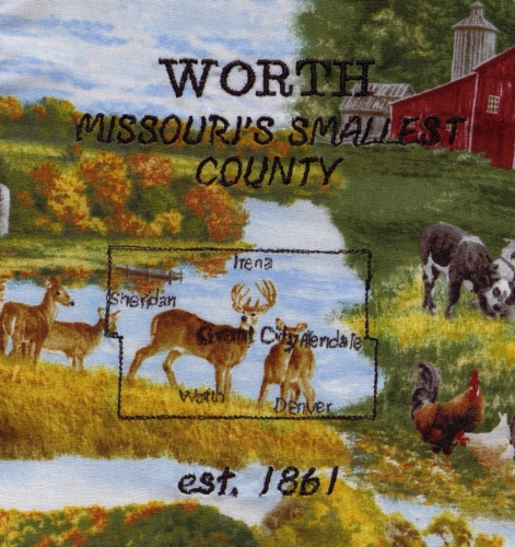 Missouri's Smallest County - Created by Helen Ford. **Selected for the Missouri Bicentennial Quilt**